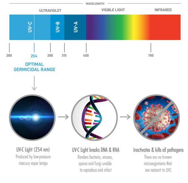 UV-Light-Explained